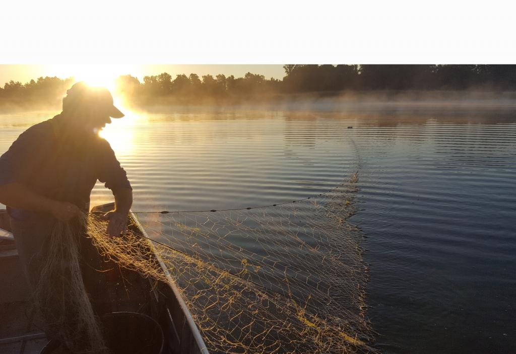 Fischen bei Sonnenaufgang